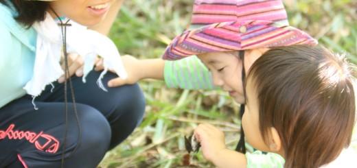 くるみっこ 田舎 岡山 自主保育 自然 プレーパーク 子育て