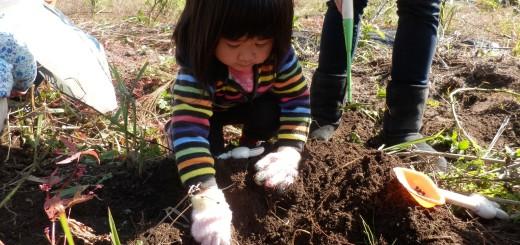 くるみっこ、岡山、美作、梶並、自主保育、保育、幼稚園、子育て、自然、遊び、プレーパーク